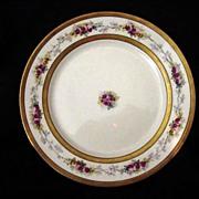 Elegant Limoges Porcelain Cabinet Plate ~ Double Gold Bands ~ Pink & Yellow Roses – B & H Limoges (Blakeman & Henderson)