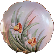 SALE Wonderful Limoges Porcelain Plate with Hand Painted Yellow Daffodils – Limoges France 1