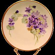 "Pickard Studio Decorated ~ Cabinet Plate ~ Hand Painted with Purple Violets ~ Artist Signed ""DEV'' - DEVOE ~ Thomas Bavaria~ 1912-1919"