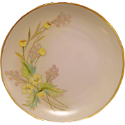 """Beautiful Pickard / Rosenthal Bavarian Porcelain Cabinet Plate ~ Hand Painted with Yellow Buttercup ~ Artist """"Anton Beutlich"""" Signed ~ 1905-1910"""