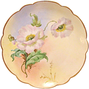 """Wonderful Bavarian Porcelain Cabinet Plate ~ Hand Painted by Pickard Artist """"Florence James"""" with Poppies ~ Rosenthal Bavaria/ Pickard 1905-1910"""