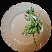 Beautiful Old Limoges Porcelain Cabinet Plate ~ Hand Painted with White Flowers ~ Haviland & Co France ~ 1886-1896