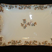 Wonderful Old Haviland Limoges Platter ~ Factory Decorated with Blue Flowers and Brown Vines ~ Charles Field Haviland / Gerard, Dufraisseix and Morel France 1882-1890