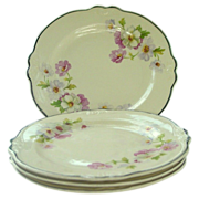 "Homer Laughlin China ~ Virginia Rose ~ Fluffy Rose #1 ~ 6 3/8"" Bread Plates"