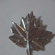 Sterling Silver Maple Leaf Stunning Pin Designer Marked