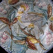 C. 1900's Majolica Plate w/Bird, Berries & Leaves-Pastel Colors