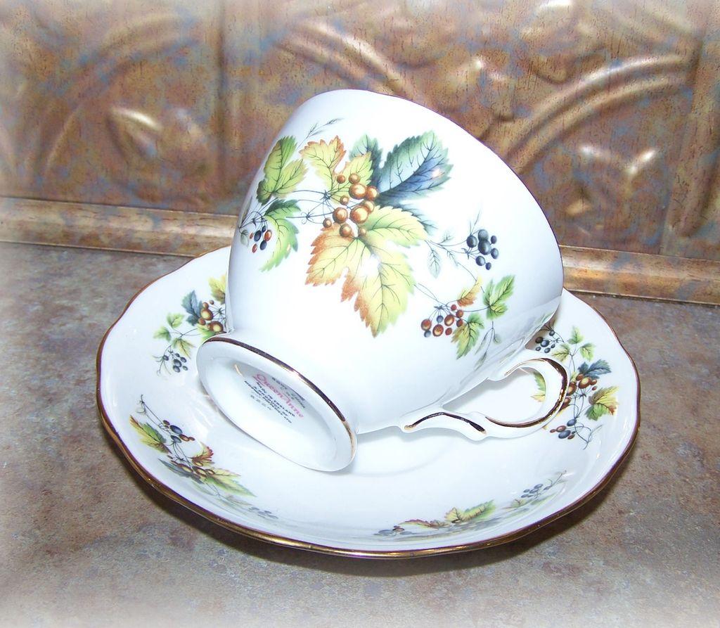 Queen Anne Leaf Berry Motif Tea Cup & Saucer Bone China