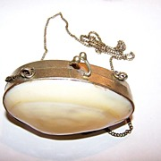 Lovely Vintage Novelty Real Shell Coin Purse