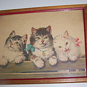 Such A Sweet Vintage Framed Kitten Pussy Cat  Print