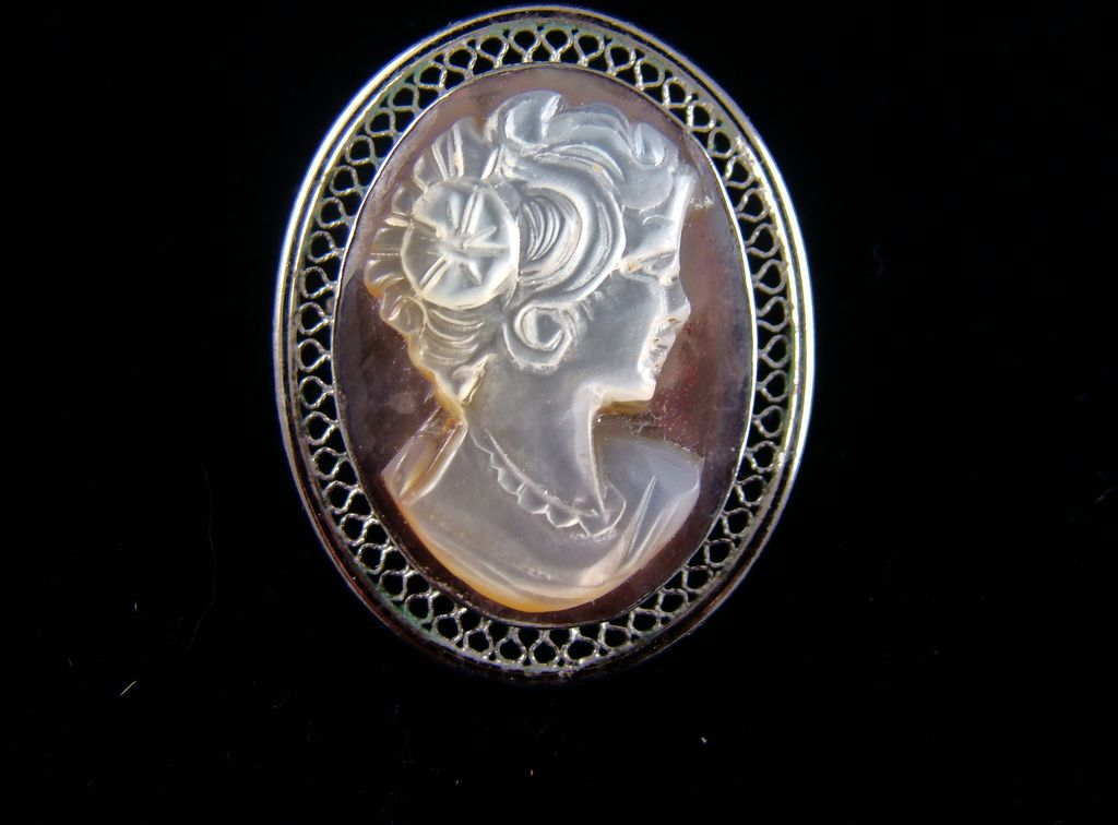 Beau Sterling Mother of Pearl Cameo on Abalone Brooch