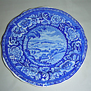 Rare Dark Blue American Historical Staffordshire Plate from Clews' Cities Series ~ Washington (D.C.)