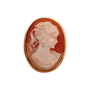 Vintage Carved Shell Cameo Brooch
