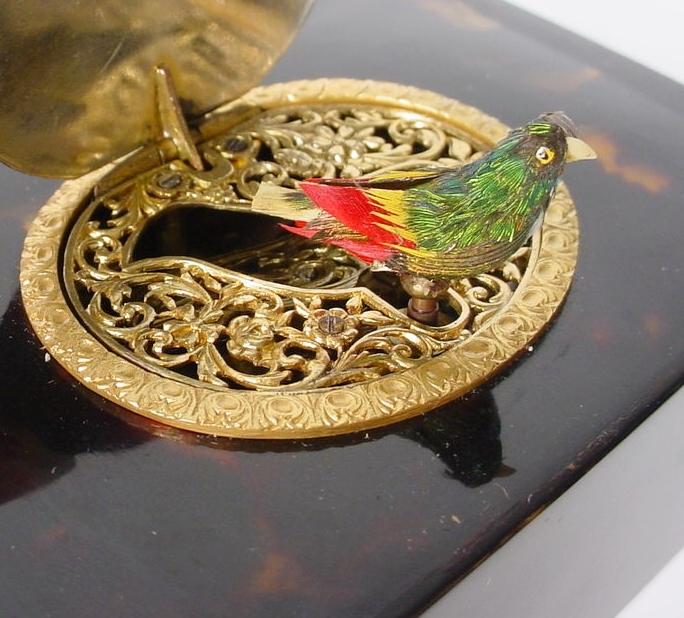 "Extraordinary Antique French Bird Box ""Glass Eyes"""